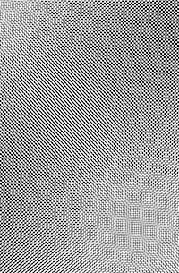 moire pattern2
